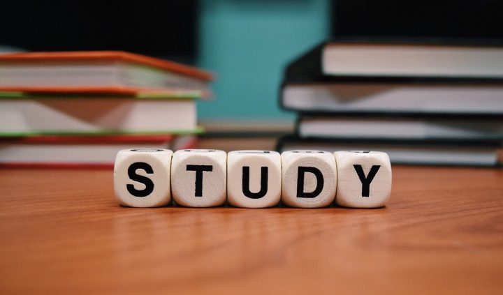 Studie Customer Journey / Markt / Study