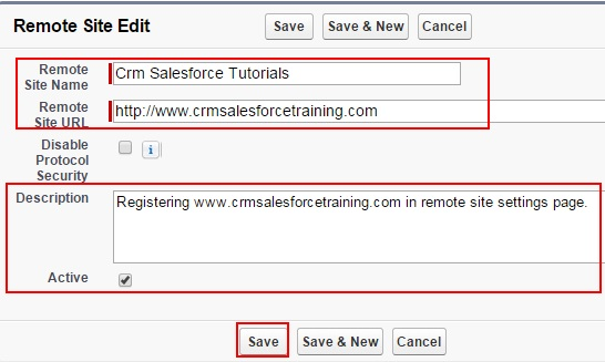 Salesforce Remote Site Settings -Accessing  External Websites