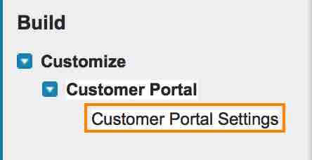What is Customer Portal in Salesforce.