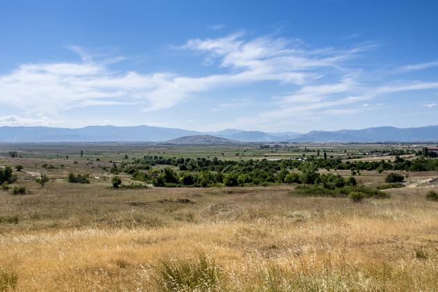 makedonija-ima-rajska-ubavina-polinja-sonchogledi-srede-pelagonija-foto-14.jpg