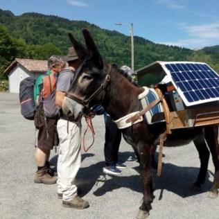 L'âne avec les protagonistes du projet ERASMUS