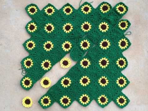 The sawtooth sunflower throw as of sunset, April 3, 3013