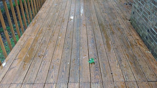 rain soaked deck