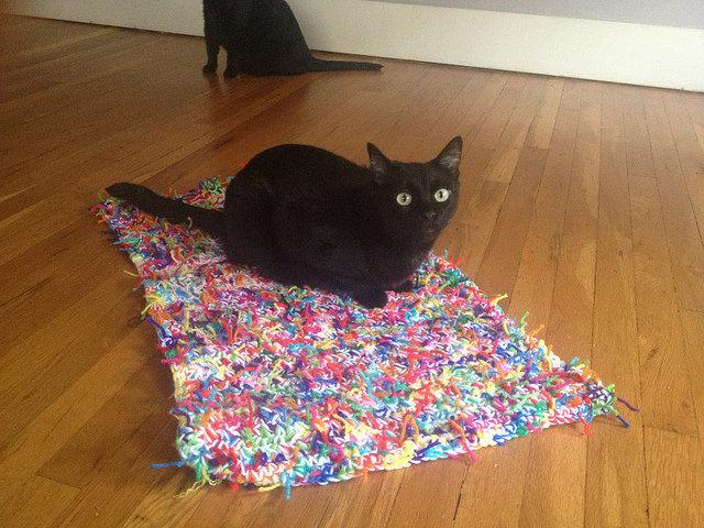 crochet kitty litter cat mat