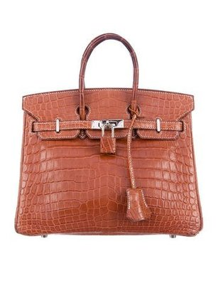 Crocodile Birkin 25