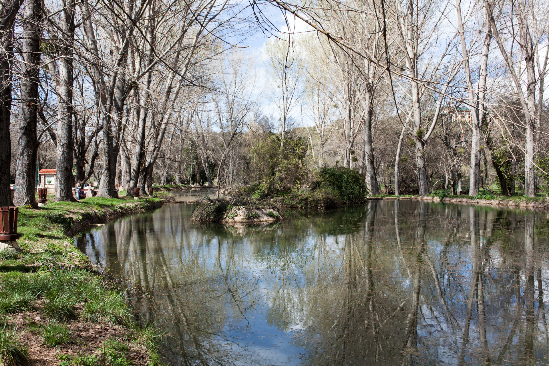 The river in Ifrane were we had our pic nic