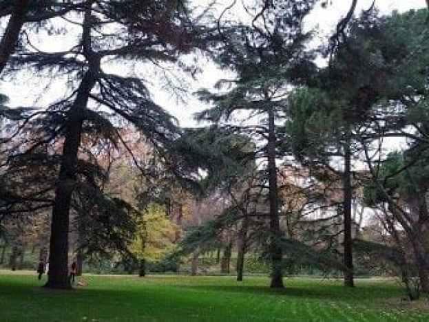 Jardín Paisajista en la Alameda de Osuna