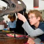 Museos dinosaurios