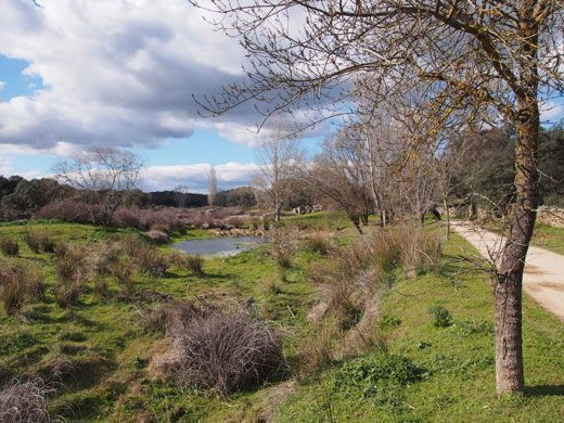 Ribera del Cara, Camino El Batrocal.