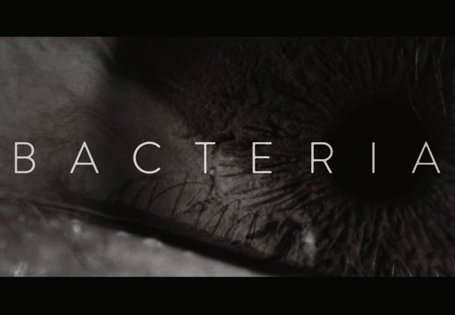 Bacteria | Abertura
