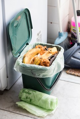 Small compostable food caddy liners available at Cromwell
