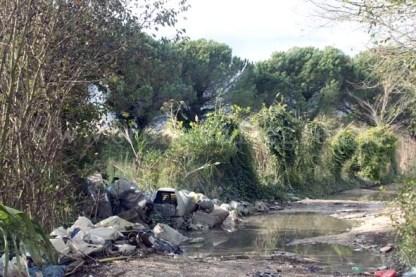 Il primo impatto con la Foresta di Cuma è un cumulo di rifiuti