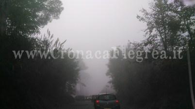 licola nebbia