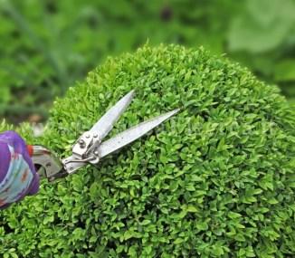 giardiniere-pota-siepe-verona-1024x896