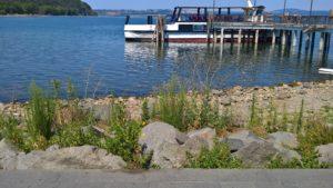 Crisi idrica: il lago di Bracciano sceso di 1 metro e 40