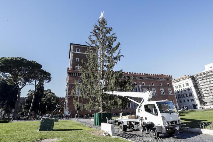 """Roma: per albero di Natale """"Spelacchio"""" spesi 48mila euro, il triplo dell'anno scorso"""