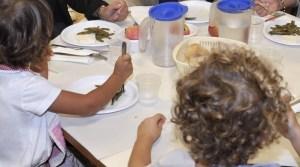 Sprechi, nelle mense di scuola un terzo del cibo va buttato, soprattutto frutta e verdura