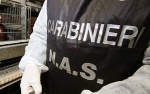 Maltrattamenti su disabili, 8 arresti in provincia di Potenza. Tra loro anche medici e un prete