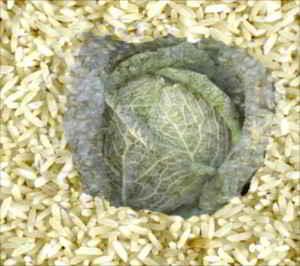 La ricetta milanese del riso e verze