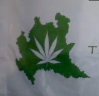 lombardia, legalizzazione cannabis