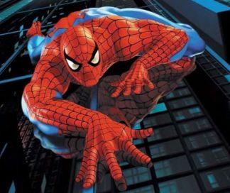 spiderman-324x272 Evasore egiziano pescato da Spiderman Lifestyle Magazine Piazza Litta (Ossona) Prima Pagina