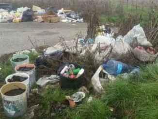 discarica abusiva di rifiuti guardie zoofile