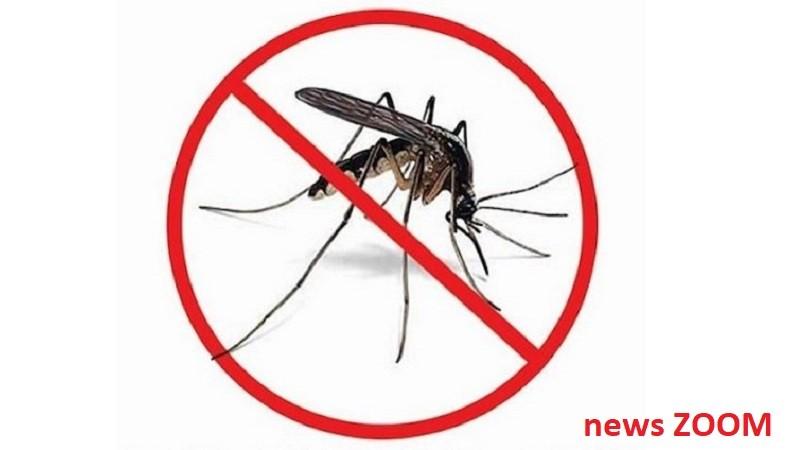 stop-dengue-ZOOM Caso di febbre di Dengue a Buccinasco. Partita la disinfestazione dalle zanzare Baranzate Cronaca Rhodense Lifestyle Prima Pagina Salute
