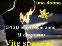457910_343431482376400_158248554_o