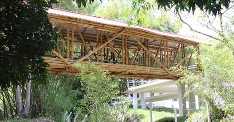Reapertura del Centro Nacional para el Estudio del Bambú y la Guadua