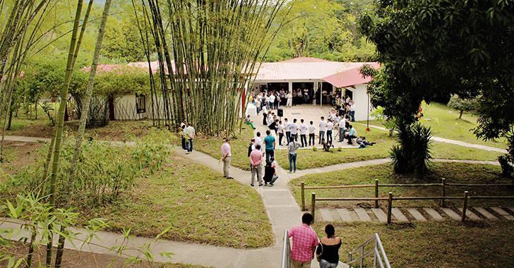 Con mayor enfoque investigativo, vuelve Centro del Bambú-Guadua