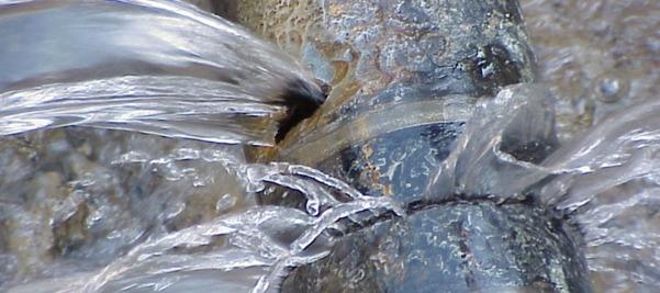 GDL desperdicia agua al por mayor | La Crónica de Hoy - Jalisco