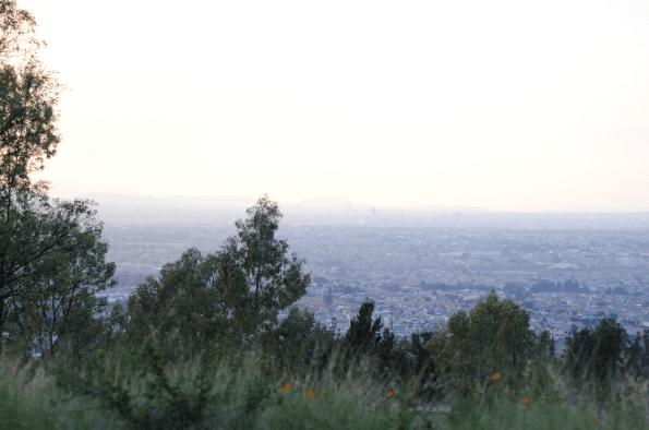 En pie, lucha por la defensa del Cerro de la Reina | La Crónica de Hoy - Jalisco