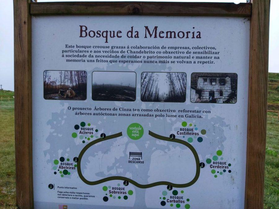 Bosque da Memoria. Nigrán.Galicia.