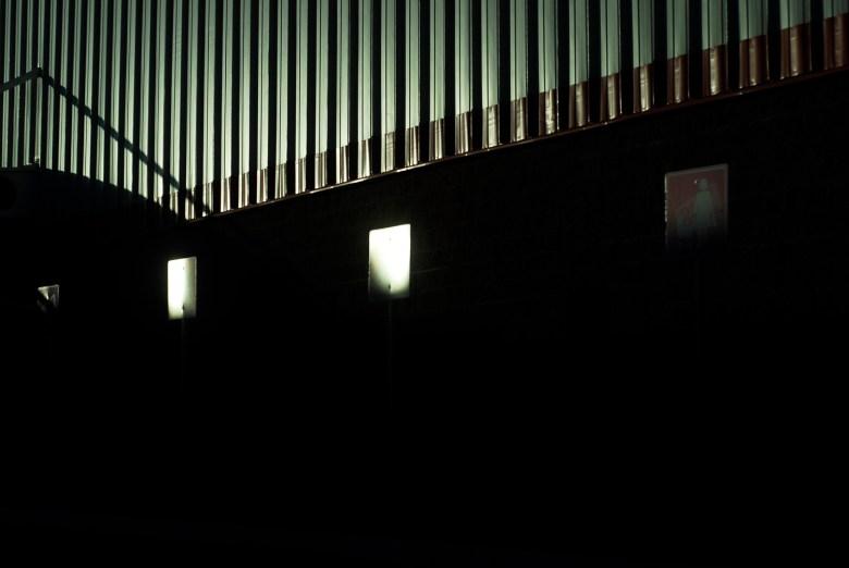 32_Portafolio_Hermosillo_CarlosLicón_Zancudo_ (6)