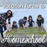 Vacation turns into homeschool