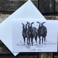 Salina Jane Art Greetings Card - Zwartbles Sheep