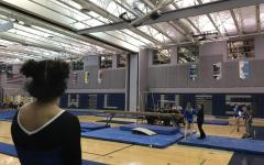 WL Places First In First Home Gymnastics Meet