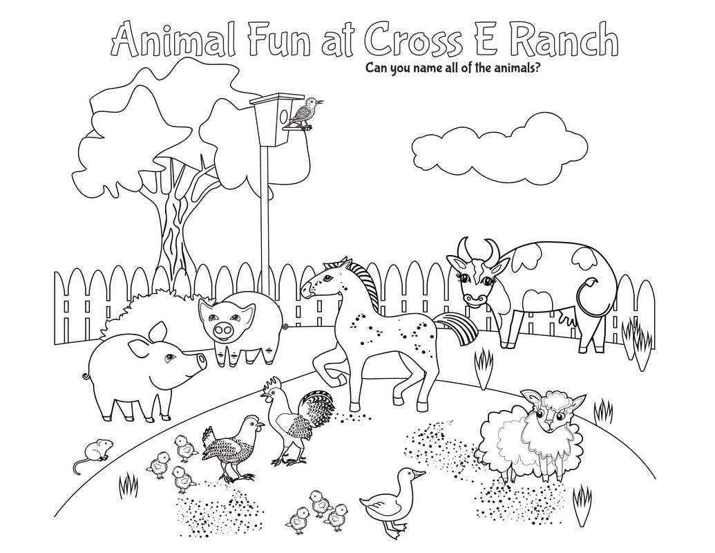 Best Coloring Pages Site Eric Carle Kangaroo Coloring Page
