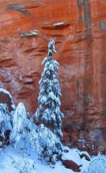Sedona Winter scene--snowfalls occur a few times each winter and are magically beautiful. Photo by Rusty Albertson