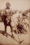 Enturance, faith and hard work - hallmarks of Hopi. Photo 1910