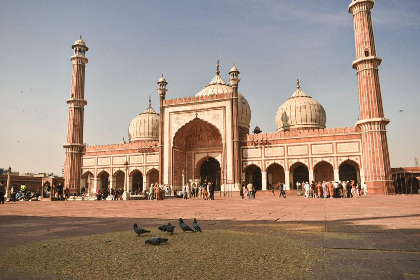 You can feed the pigeons in jama masjid