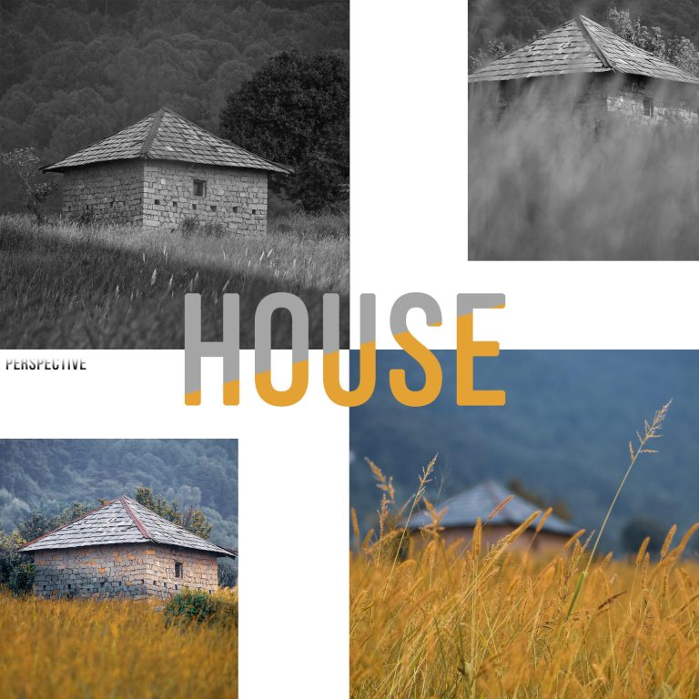 House Perspective - Collage