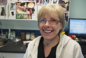 Carol Newbery - Receptionist at Crouch Vale Vets
