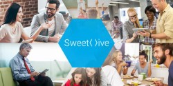 Sweethive cerca 75k equity crowdfunding su Crowdfundme