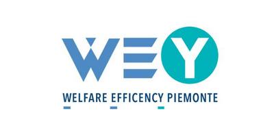 WE(Y)