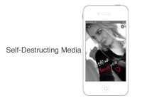 Ansa Self Destructing Media