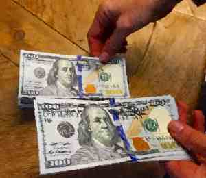 Money Dollars Art 100