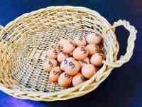 eggs-in-one-basket-risk-diversification