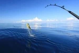 Is Deep Sea Fishing Safe? 1