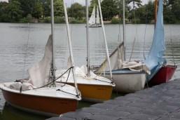 midsummer-regatta-2016-012